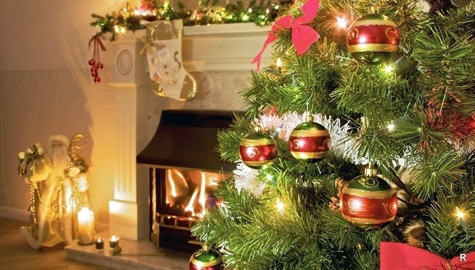 Елочка, гори: проверка разных типов новогодних деревьев на огнестойкость