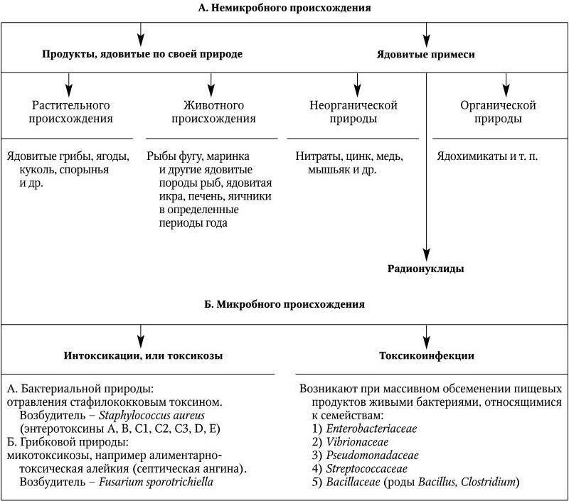 Пищевые токсикоинфекции: симптомы и лечение