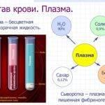 Как определить цирроз печени по анализам крови?