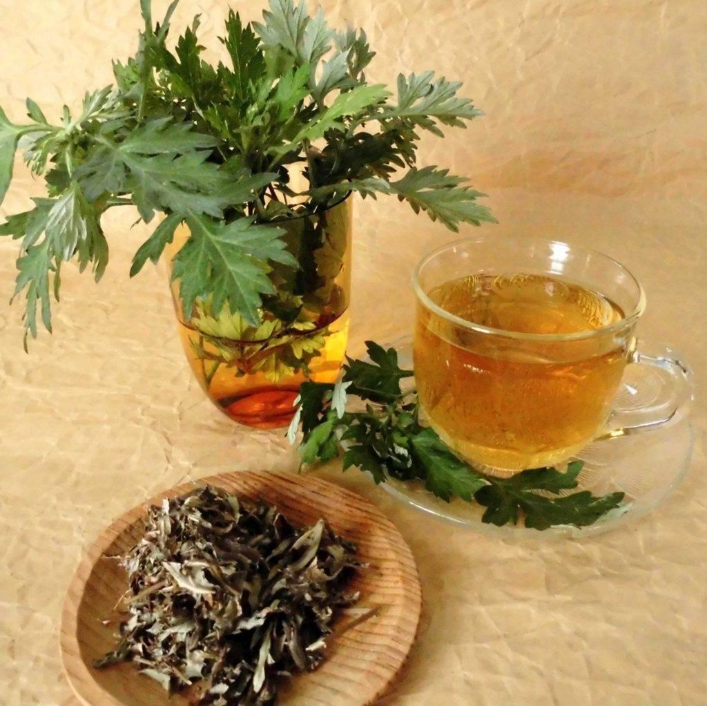 Рецепты из горькой полыни и корня одуванчика при гепатите C