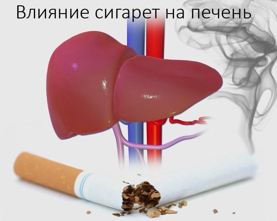 Влияет курение конопли на печень как торговать марихуаной