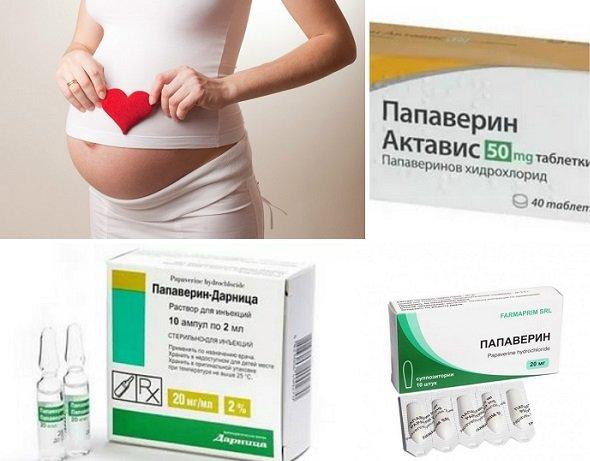 Для чего назначают «папаверин» при беременности и как его применять?