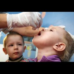 Ревакцинация полиомиелита: график, как переносится