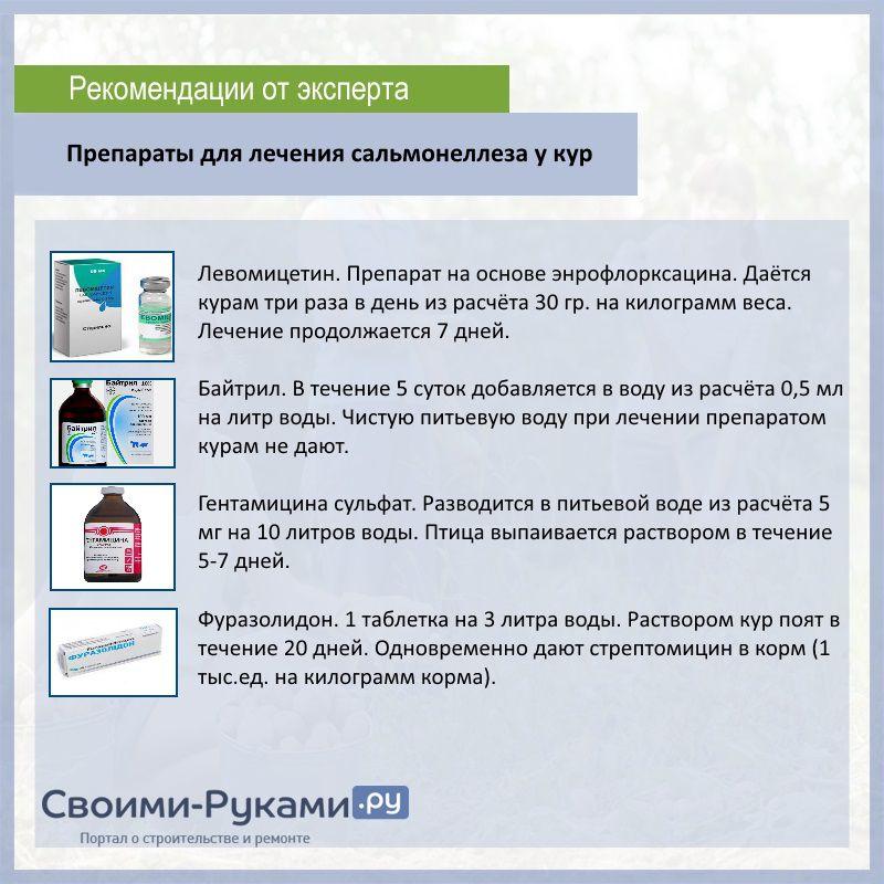 Сальмонеллез: симптомы, диагностика, лечение и профилактика