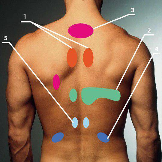 Что делать, если болит спина при пневмонии?