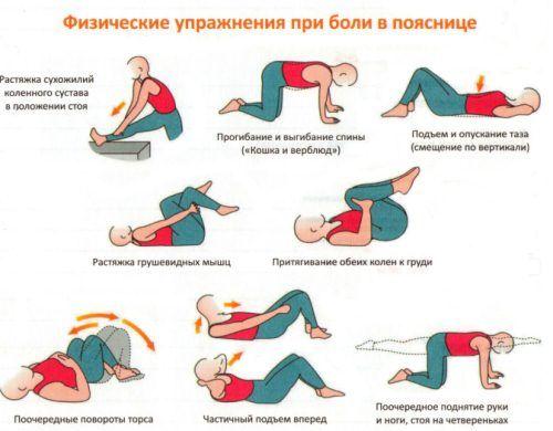 Упражнения при смещении позвонков поясничного отдела: противопоказания