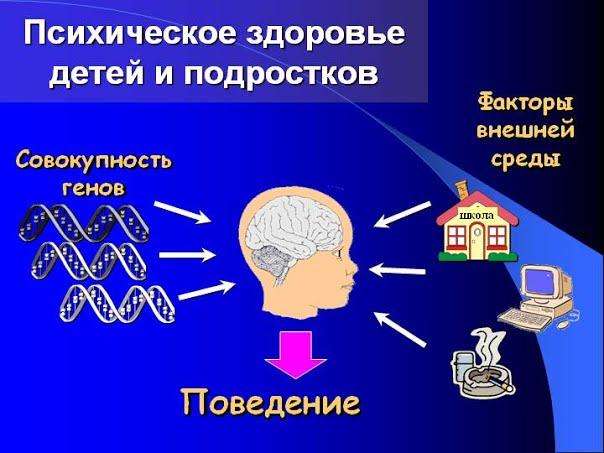Как меняются с возрастом когнитивные функции человека?