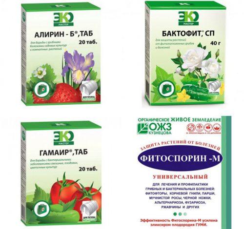 Инструкция по применению препарата для растений «фитолавин»
