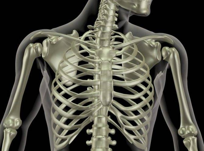 Боль в груди кашель без температуры у взрослого