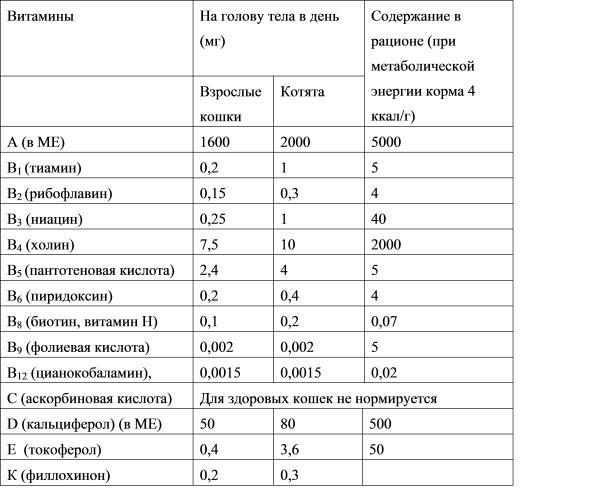 Полезные витамины: значение и роль для организма человека