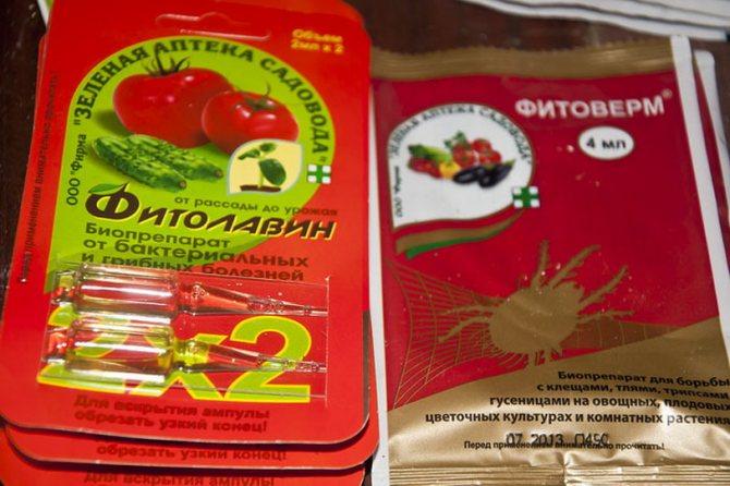 Био-антибиотик «фитолавин» – инструкция (дозировки, регламент, ограничения и пр.)