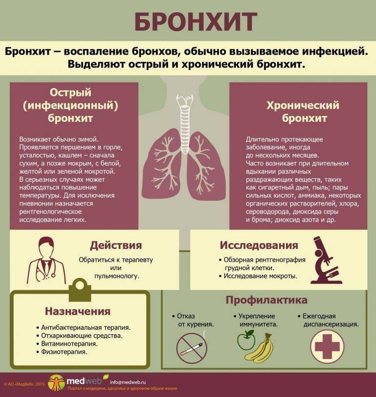 Бронхит без температуры: симптомы у взрослого и у ребенка, причины, лечение