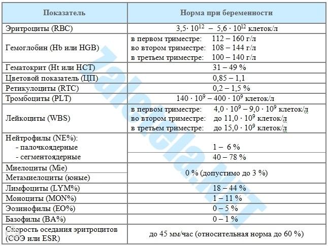 Лимфоцитоз в крови: причины, симптомы, методы лечения