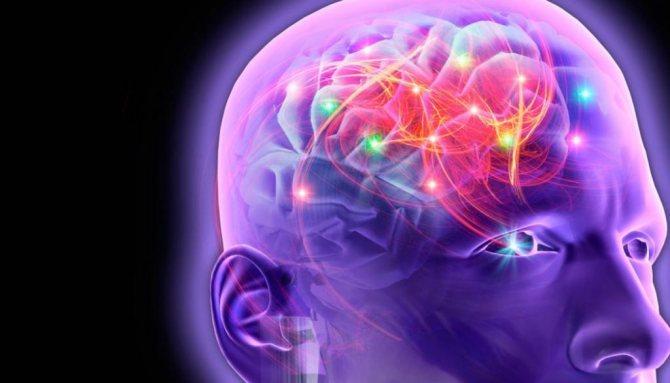 Лекарство «конвалис»: аналоги, производитель и отзывы