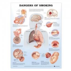 Опасность курения при бронхите