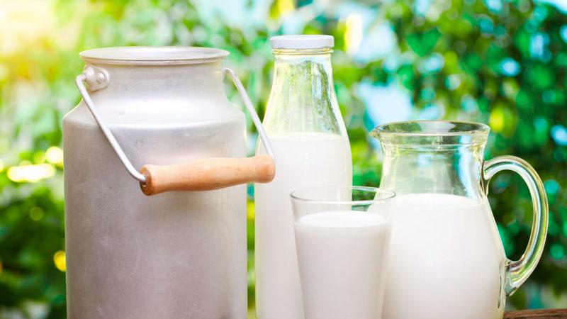 Преимущества кефирно-огуречной диеты, отзывы и результаты худеющих