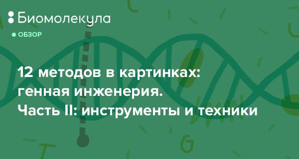 Генетическая инженерия (методы, генная инженерия, основы, основные понятия, история развития)