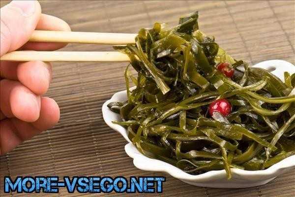 Морская капуста - польза и вред, лечебные свойства водоросли