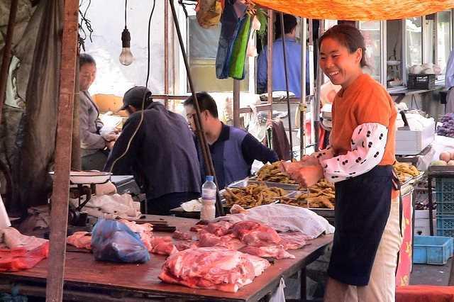 Почему мясо собаки лечит туберкулез