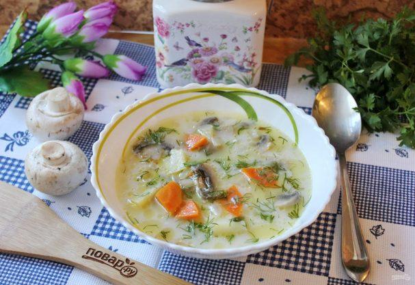 Грибной пп суп: 5 диетических рецептов с фото - пюре, из шампиньонов, низкокалорийный