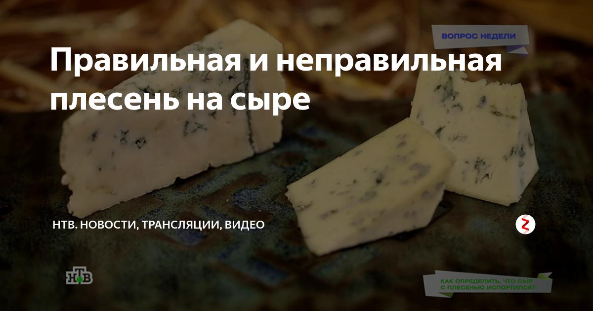 Сыр с голубой и белой плесенью: польза и вред - чем полезен продукт для организма человека - moloko-chr.ru