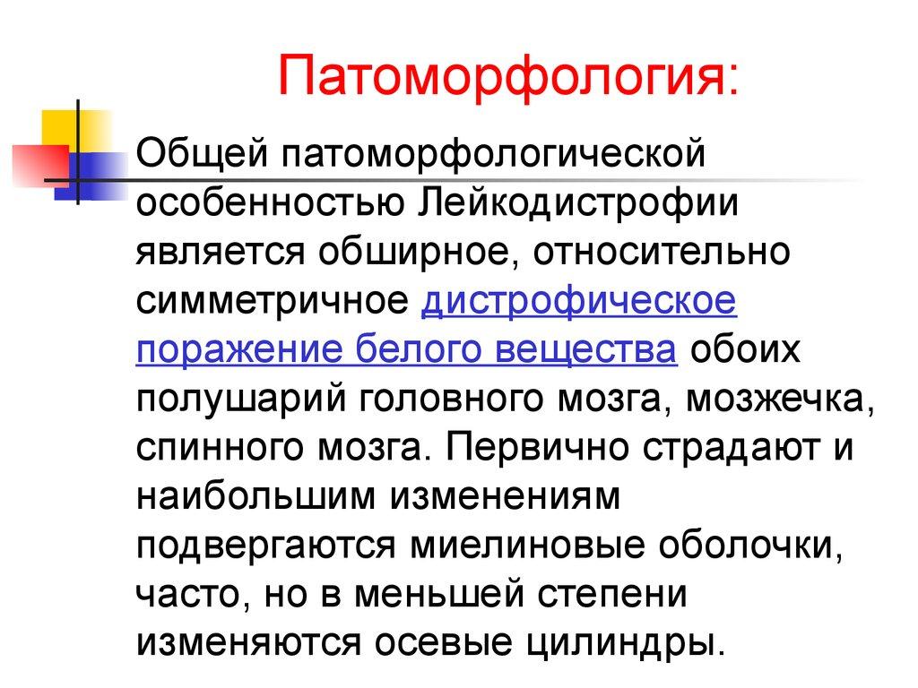 Международный неврологический журнал 4(4) 2005