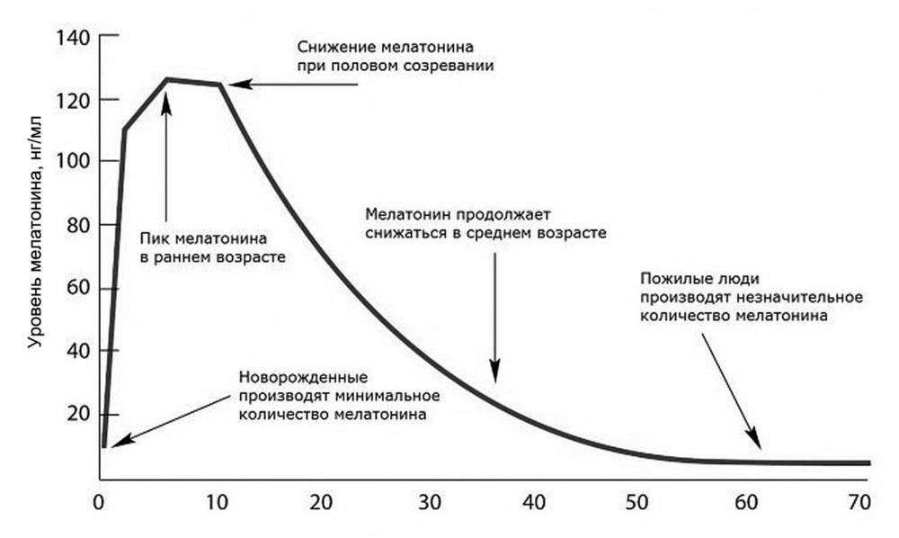 Роль мелатонина в желудочно-кишечном тракте.