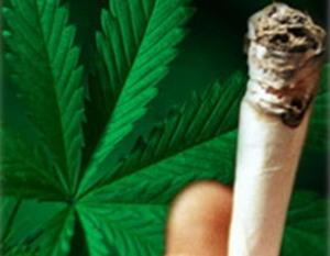 Все о каннабиноидной наркомании