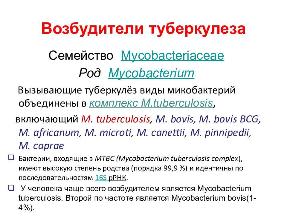 Анализ на определение антител к туберкулезу