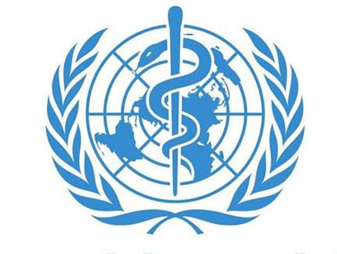 Туберкулез: бактериолог о развитии, симптоматике, лечении и профилактике