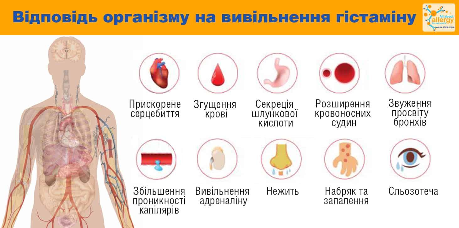 Инструкция: гистамина дигидрохлорид