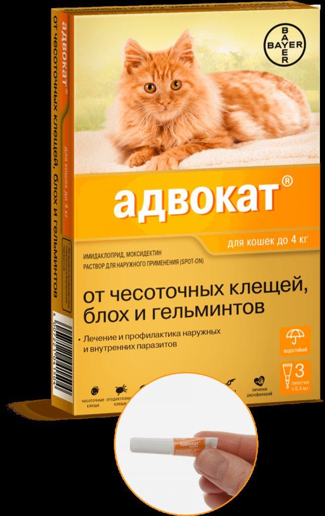 Лучшие таблетки от глистов для человека