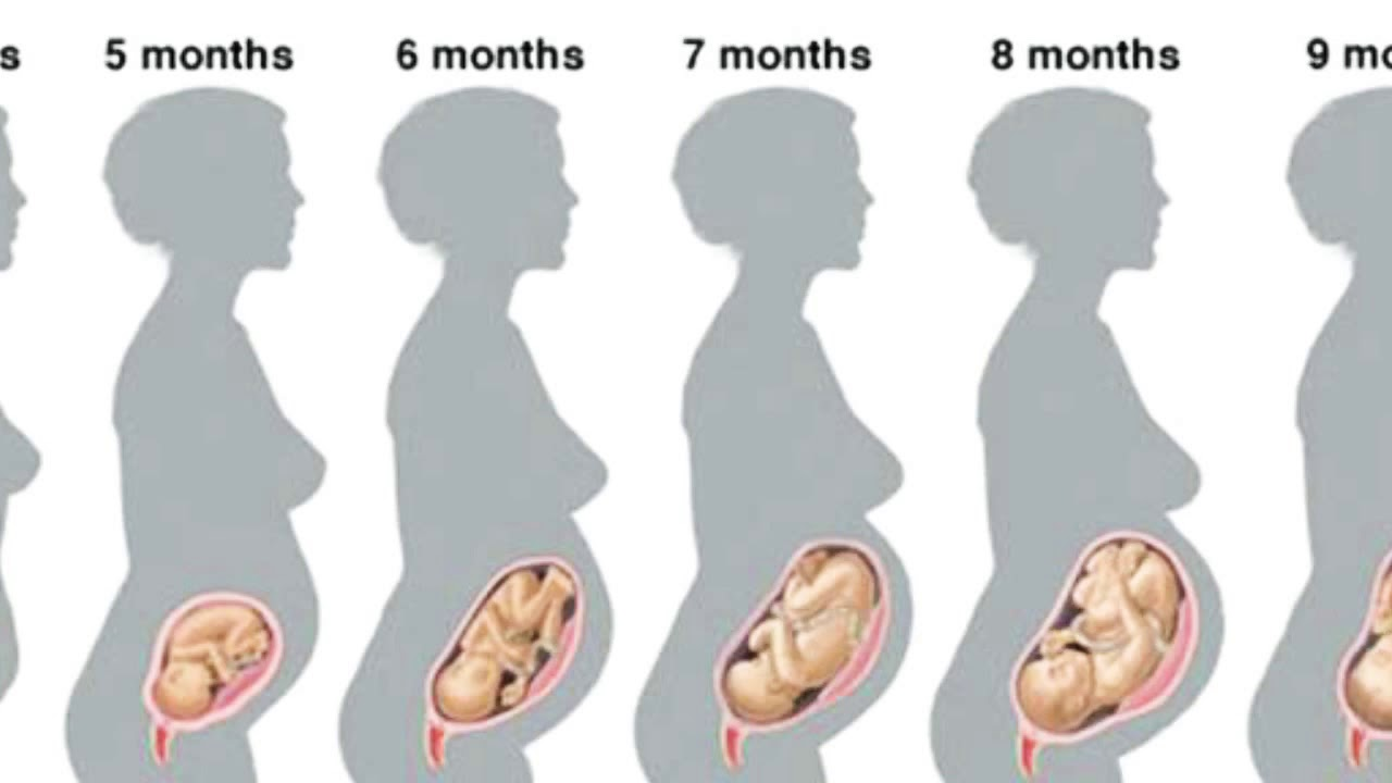 Девятый месяц – долгожданный, девятый месяц беременности психологическое состояние
