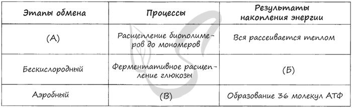Сайт учителей биологии мбоу лицей № 2 города воронежа - обмен веществ