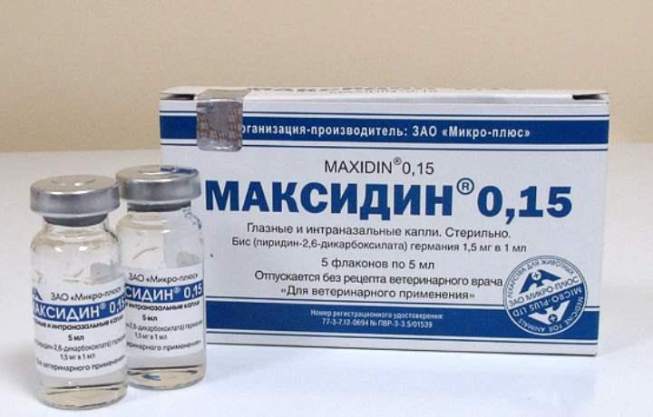 Подробная информация про уколы и капли максидин для собак