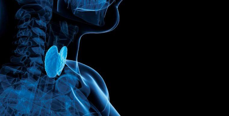 Заболевание гипотиреоз: симптомы и лечение, профилактика