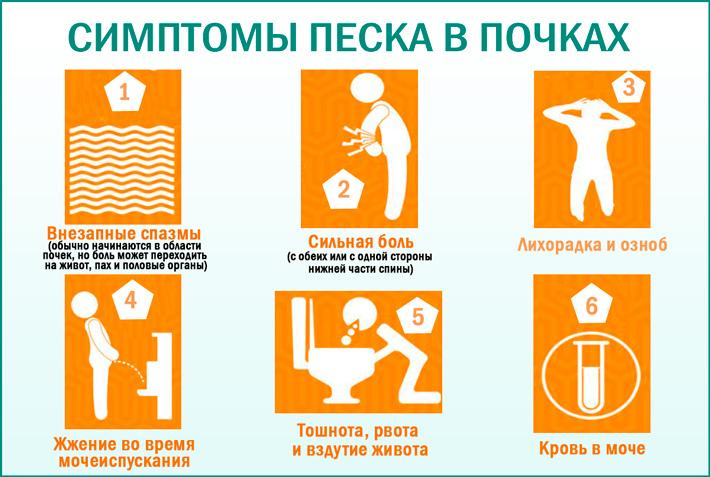 Лечение почек народными средствами в домашних условиях. как лечить почки на дому