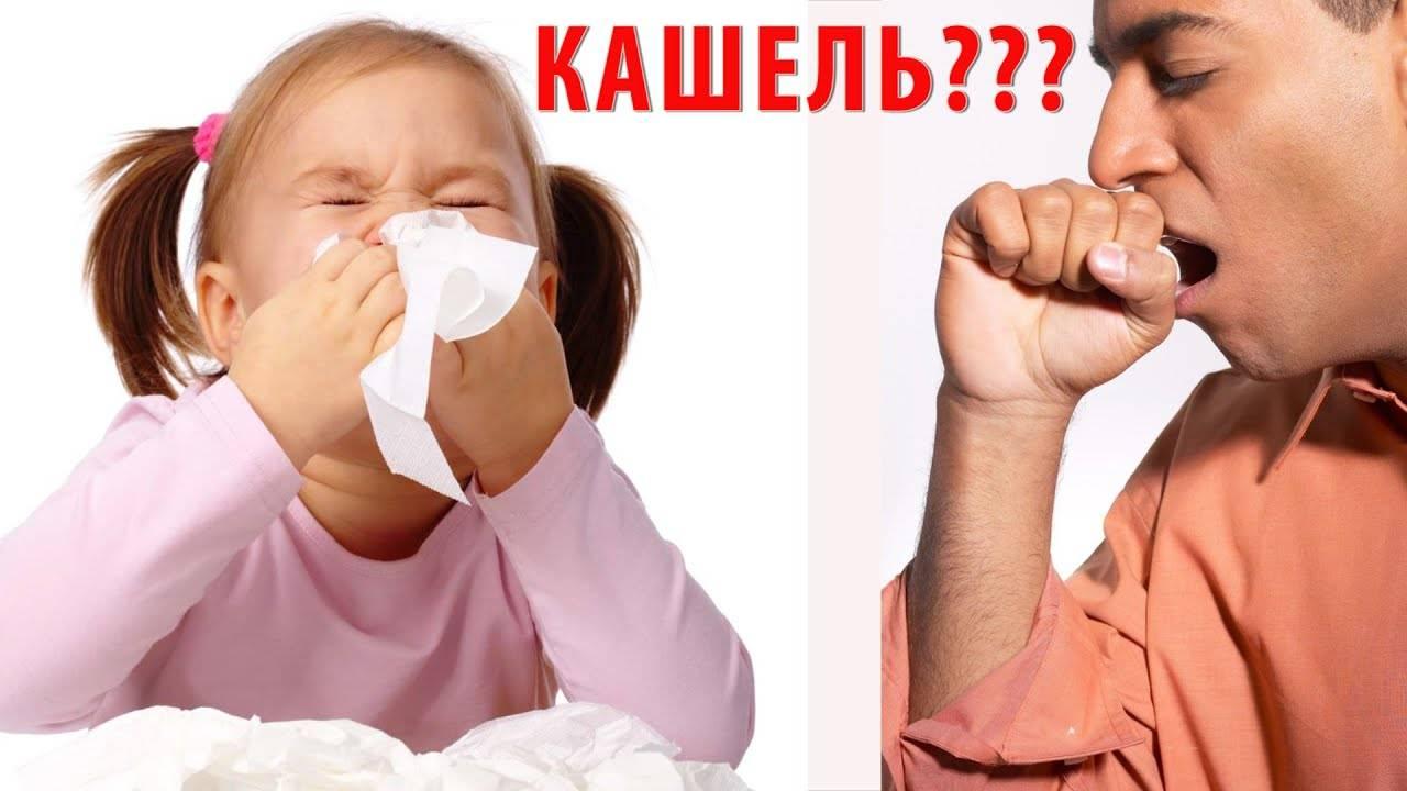Лечение хронического кашля у взрослых народными средствами