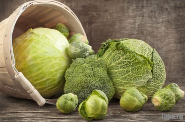 Капустная диета: плоский живот за 14 дней