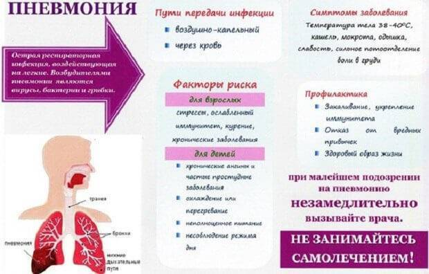 Бронхопневмония: причины и развитие, симптомы, лечение