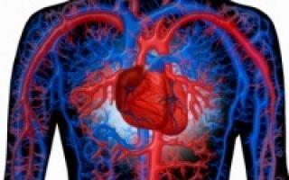 Аневризма аорты: симптомы в зависимости от отдела, причины, лечение и прогноз жизни
