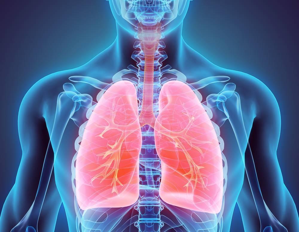 Долго не проходит редкий кашель. длительный кашель (неделя, месяц) и его лечение