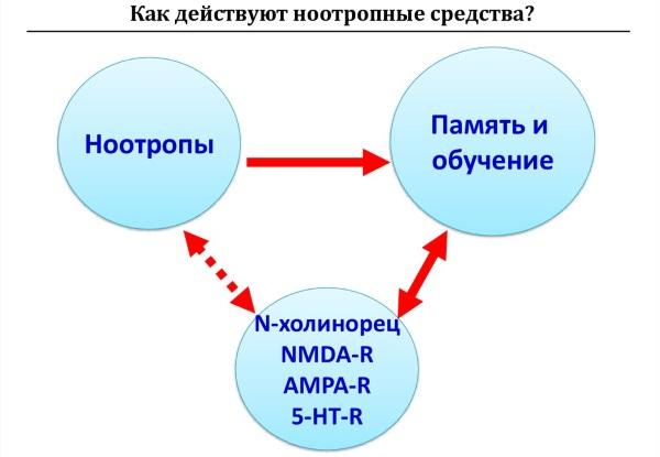 """""""ноопепт"""": отзывы, показания к применению и инструкция по использованию"""