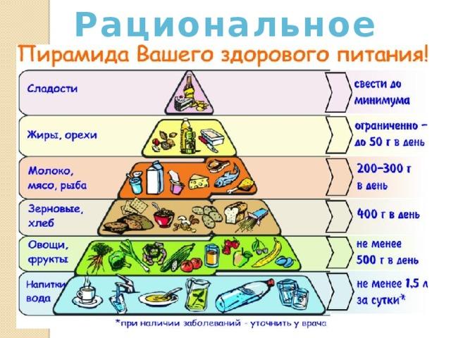Рациональное питание: правильная организация и принципы
