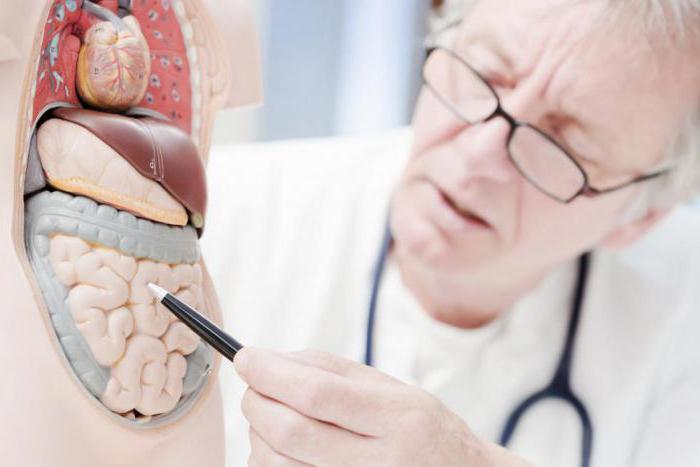 Энтероколит — симптомы и лечение у взрослых и детей