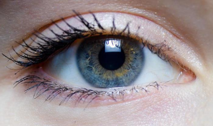 Чем глазной гель видисик лучше капель? инструкция, отзывы и цена