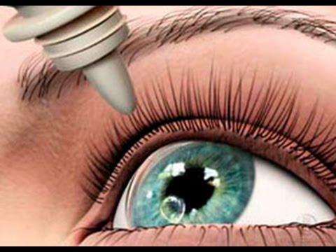 Глазные капли сигницеф: для чего назначают и что лучше — сигницеф или ципромед
