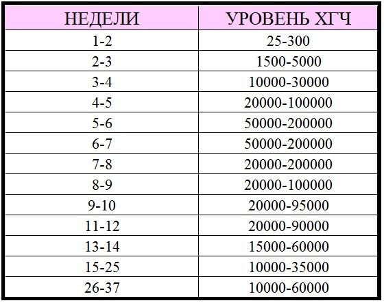Хгч при беременности: норма по неделям (таблица)