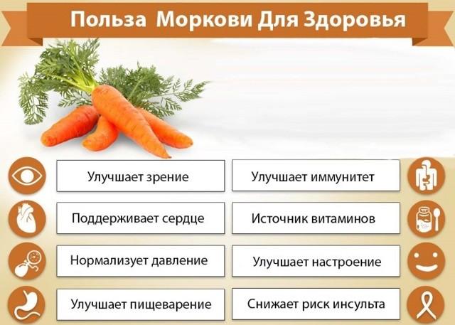 Чем морковь полезна при диете