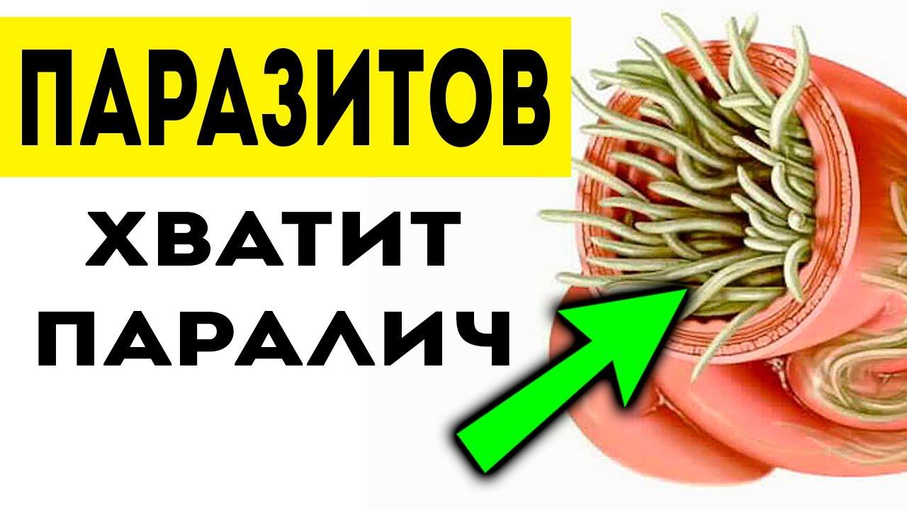 Какие продукты убивают паразитов